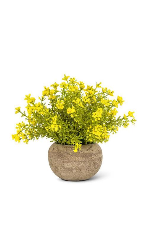 Petit Pot Fleuri - YELLOW WOODHILL